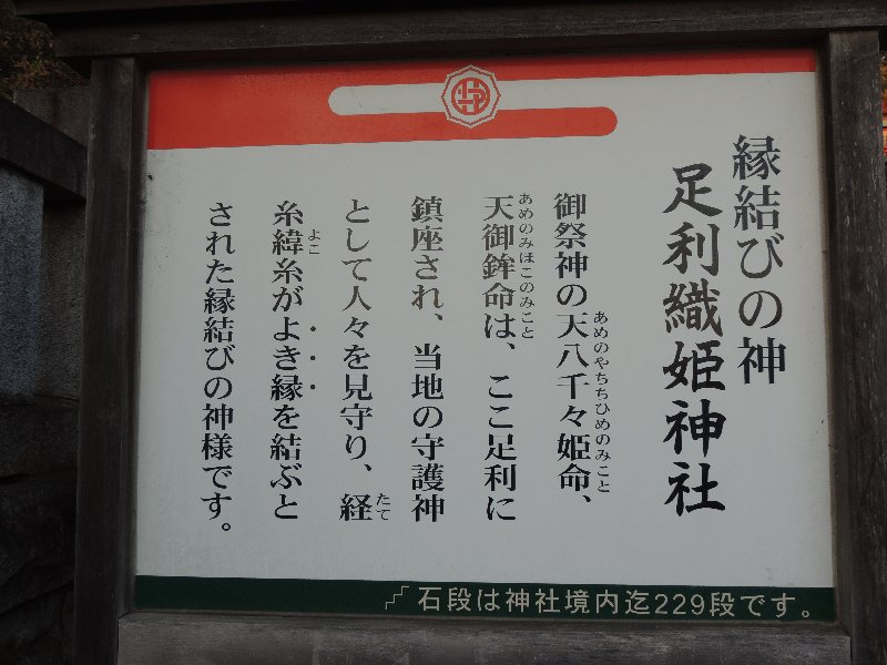 写真⑤DSCN1607