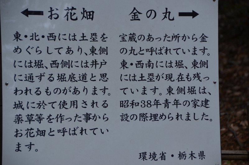 21 DSC_8299